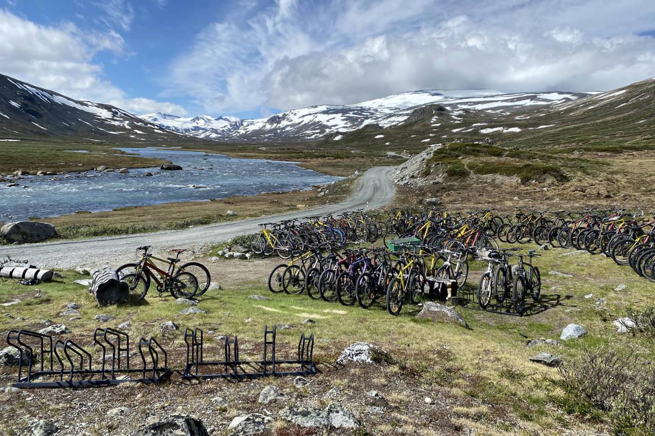 elsykkel nasjonalpark jotunheimen