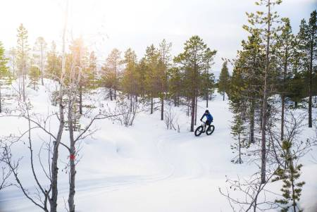 sykling fatbike alta løype