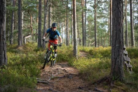 SER MULIGHETER: Inger Helene Hamborg i selskapet SilverTrails vil vise frem Kongsberg til stisyklister. Foto: Joar Sørvik Solem