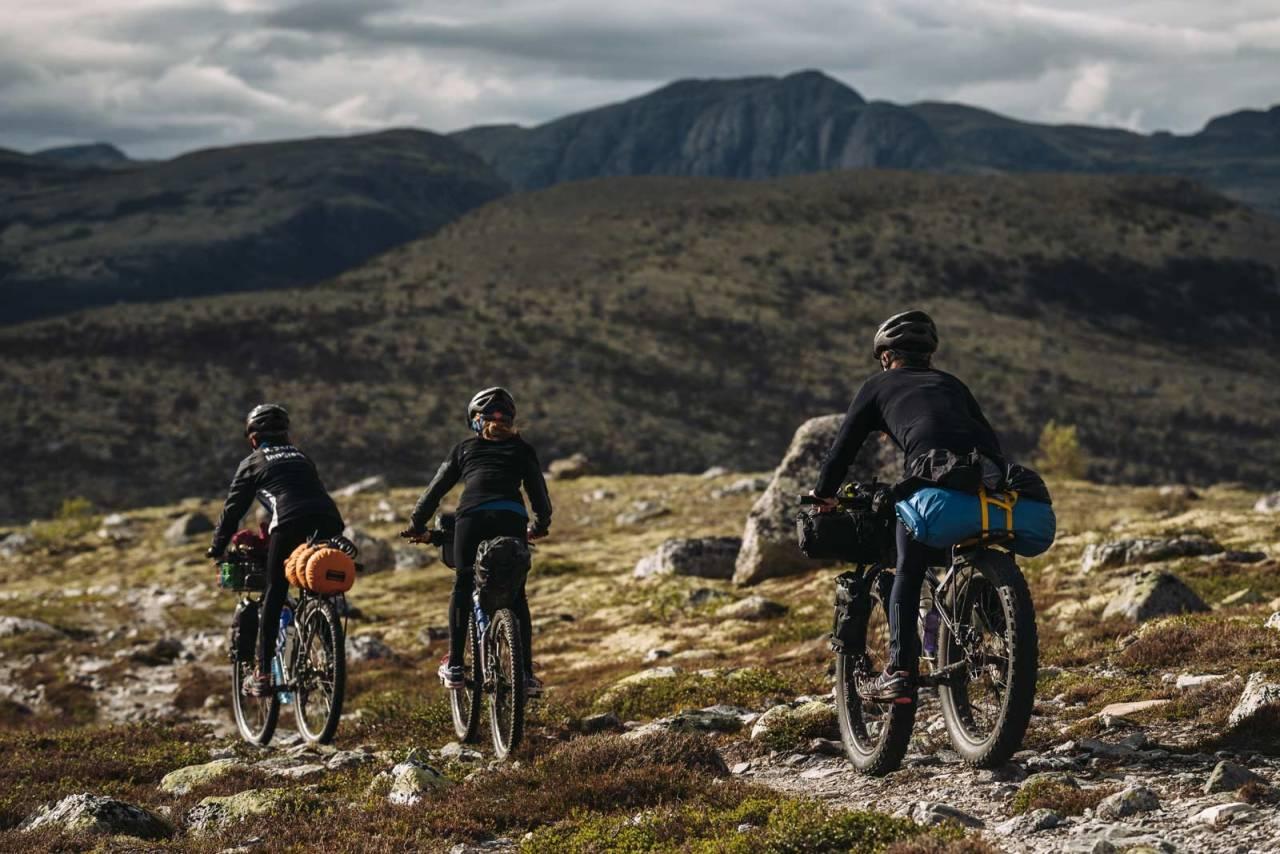 FELLESTUR: Av og til er det bedre å dele opplevelsene med andre. Foto: Mikkel Soya Bølstad.