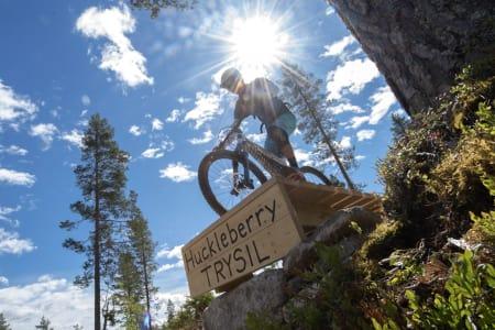 20 prosent økning for Trysil Bike Park