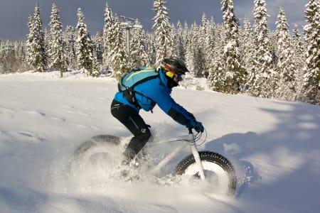 De første turene på snø