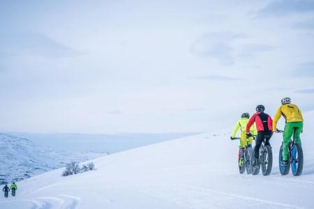 Skaidi Fatbike, som i år fungerer som uoffisielt NM i tjukksykkel, trekker rekordmange til Finnmarksvidda. Foto: Rino Engdal