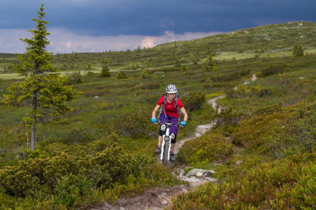 Regelen er at det skal være lov å sykle på sti i utmark. Det er klinkende klart i den nye Stortingsmeldingen om friluftsliv, som ble lagt fram i dag. Foto: Caroline Strømhylden/NOTS Lillehammer