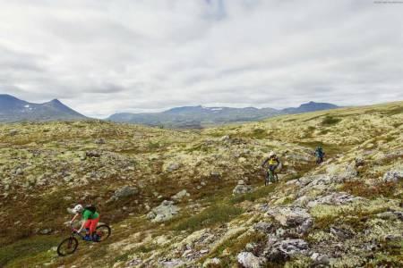 Guidede sykkelturer blir en enda større del av Livestockfestivalen i Alvdal, og turen i Alvdal Vestfjell fra Terrengsykkel-reportasjen i utgave 69 i fjor høst er med på årets turmeny. Foto: Kristoffer Kippernes