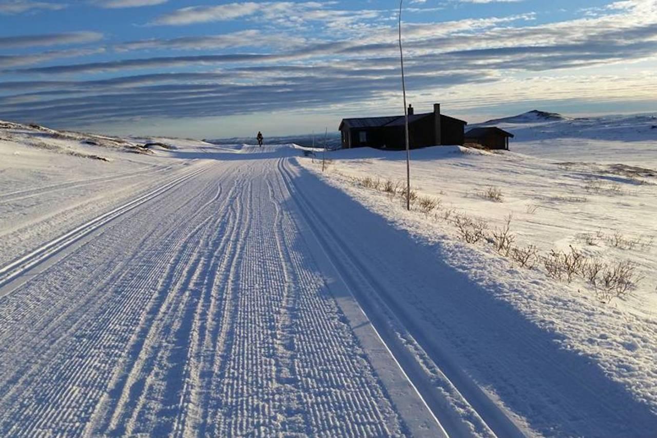 Lang løype i tjukksykkelrittet Fat Viking på Geilo, som ble arrangert for første gang i helga, fungerte også som kvalifiseringsritt til Iditarod Trail Invitational i Alaska. Foto: Kathi Merchant