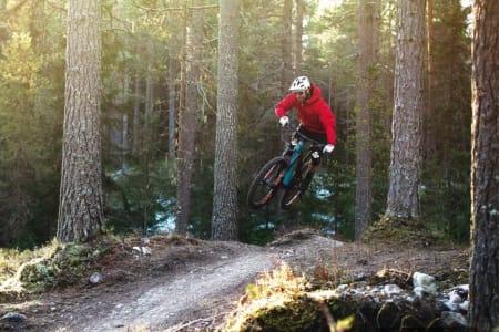 Nå er det lov å sykle med elsykkel på sti også i Oslomarka. Foto: Øyvind Aas