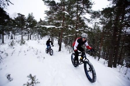 FET TUR: Tor Olav Gregersen og Tore Haslemo på tur i Lillomarka, vinteren 2014.