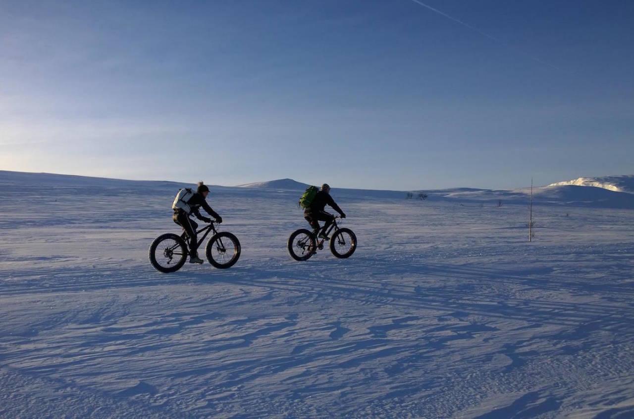 150km på fatbike i høyfjellsterreng kan bli en heftig utfordring. Fat Viking Challenge på Geilo er kvalifiseringsritt for det 500km lange Iditarod Trail Invitational 2017. Foto: Nina Gässler