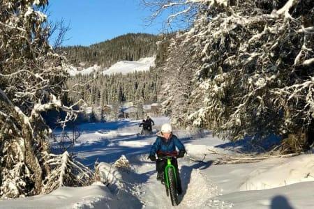 Vinterstiene i Øyfjell har blitt populære både blant innbyggerne i bygda og tilreisende. Foto: Øyfjell Fatbikeløype