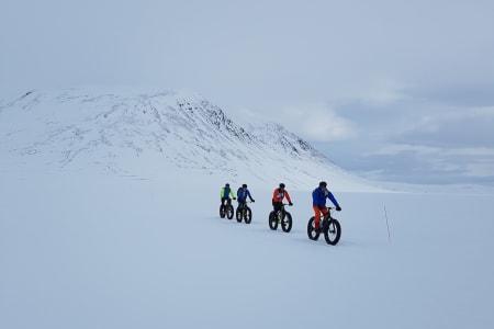 Fire mann og fire dager over Finnmarksvidda