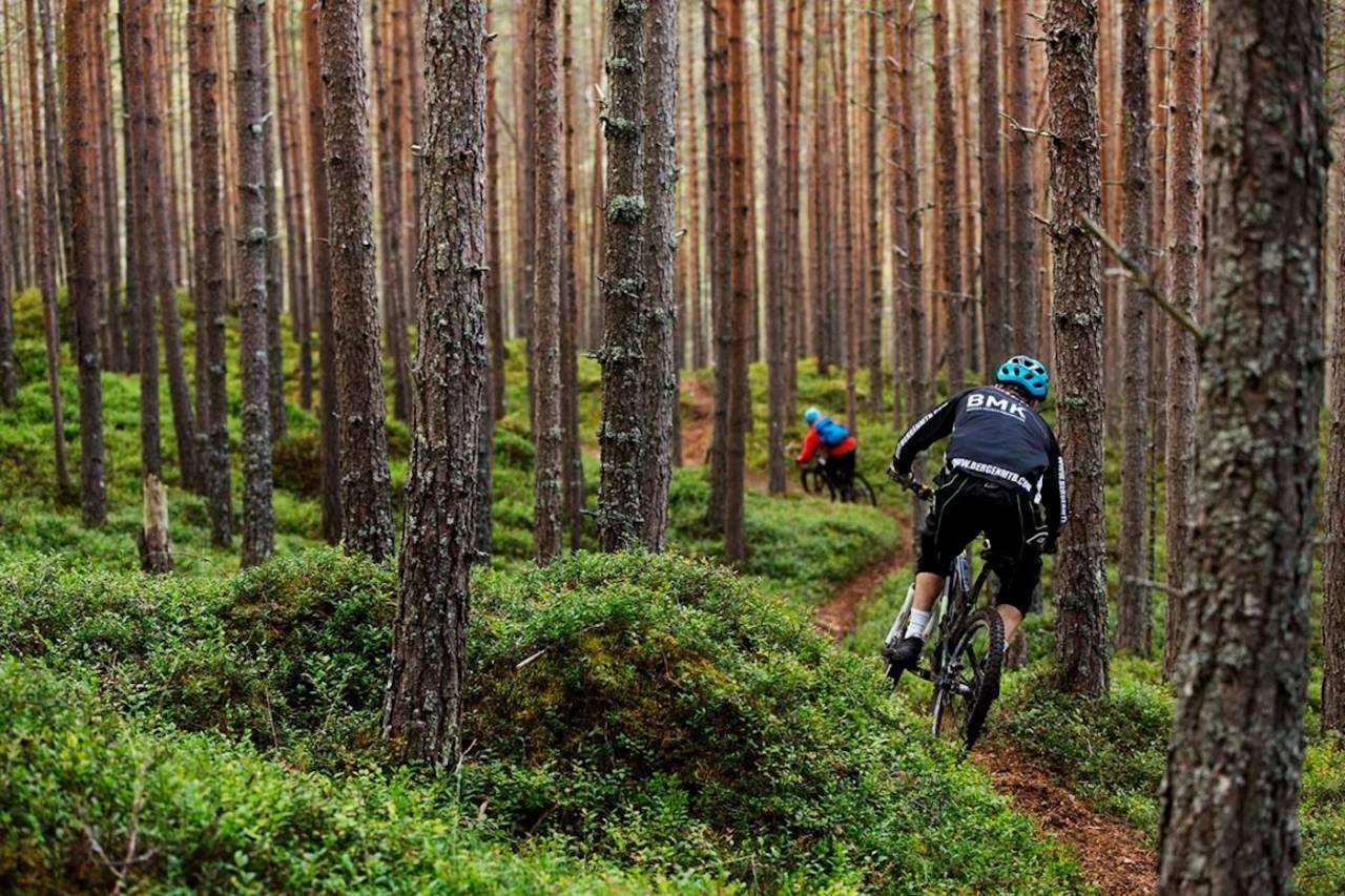 Vestlandsforsking vil finne ut av hvilke faktorer som påvirker hvor folk sykler. Foto: Kristoffer Kippernes