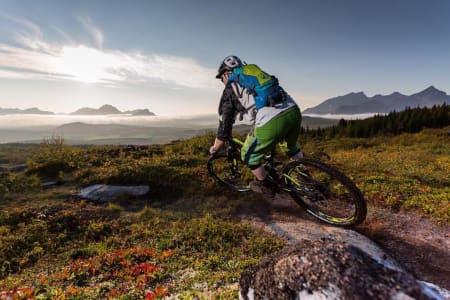 Friluftsturismen eksploderer – syklistene får skylda for stislitasje