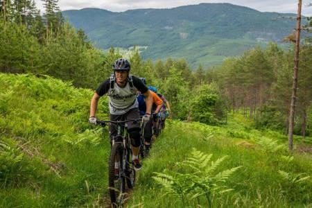 Det er fortsatt håp om at lokale syklister skal kunne nyte stiene på Kaupanger selv om deler av området skulle bli vernet. Foto: Bård Basberg