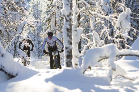 Her sykler du fatbike i vinter