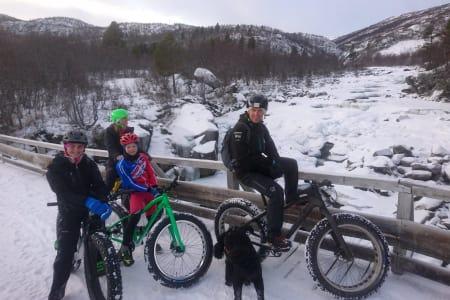 Høydahl feiret tjukksykkeldagen på Geilo