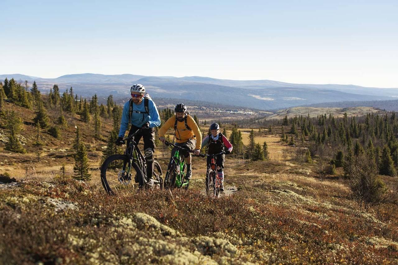 Norsk institutt for naturforskning skal kartlegge hva slags stier som egner seg for sykling. Foto: Kristoffer Kippernes