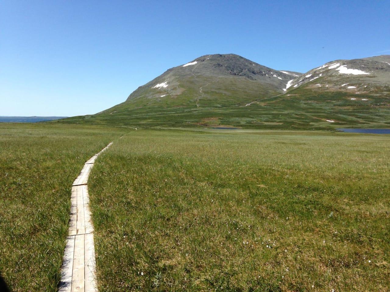Behov for planlegging: Hemsedal kommune mener sykling er en av aktivitetene som må sees nærmere på når ny sti- og løypeplan skal utarbeides. (foto: Claes Watndal)