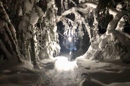 Nå er alt av fatbikestier i Lillehammer preppet, og snøkledde trær sørger for julekortstemning i skogen. Foto: Snorre Pedersen