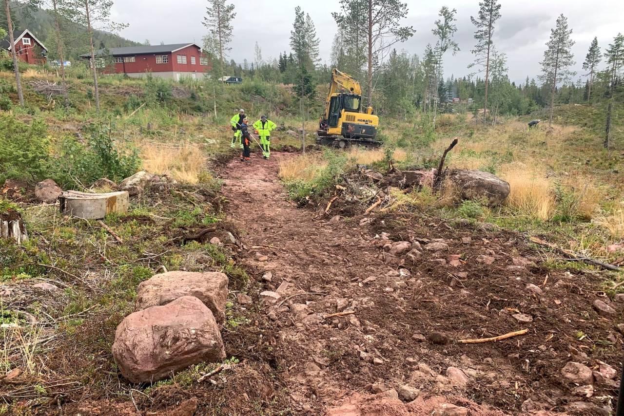 Her kommer Fulufjellets første bygde stier. Totalt en halv kilometer sti fordelt på en grønn og en blå løype står klare til høstferien. Foto: Fulufjellet alpinsenter