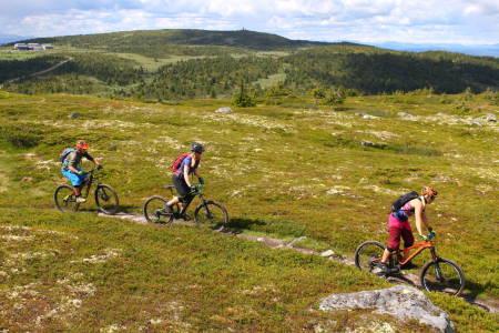 Turalternativene i Øyerfjellet og Birkenland er mange. Øyvind Wold presenterer 35 av dem i sin nye bok «35 sykkelturer i verdens beste skiterreng - Hafjell – Øyerfjellet – Nordseter – Sjusjøen». Foto: Øyvind Wold