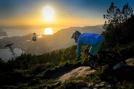 Å få på plass noen enklere stier i bynære strøk er ett av de første prosjektene det nystiftede NOTS Bergen vil ta tak i. Foto: Terrengsykkel.no