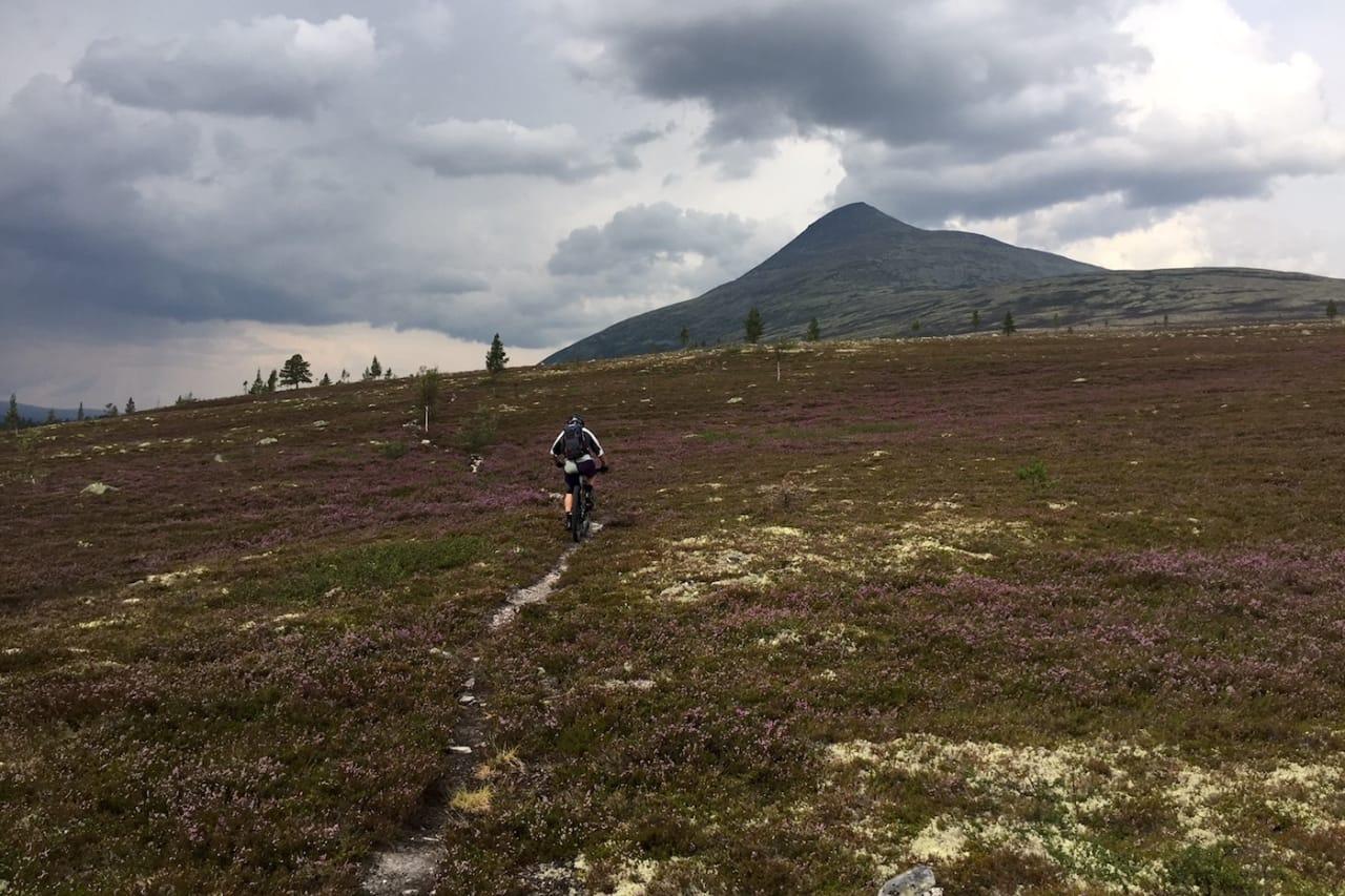 Elgpiggen er en av mange toppturer som er lett tilgjengelige fra Sølendalen. Foto: Emil Carlson
