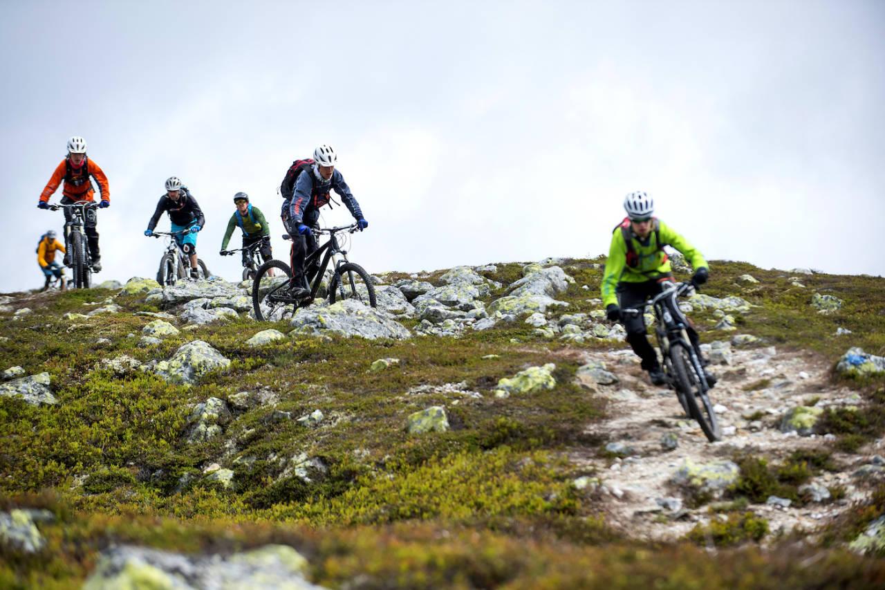 Stadig flere tilbyr guidede stisykkelturer. Derfor lanseres nå et nytt norsk sertifiseringsprogram for guider. Foto: Jonas Hasselgren/Utefoto