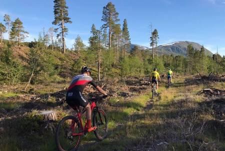 Det blir langt mer terreng og vesentlig mindre grus i den nye maratonløypa til Sykkelenern på Oppdal. Foto: Arrangøren