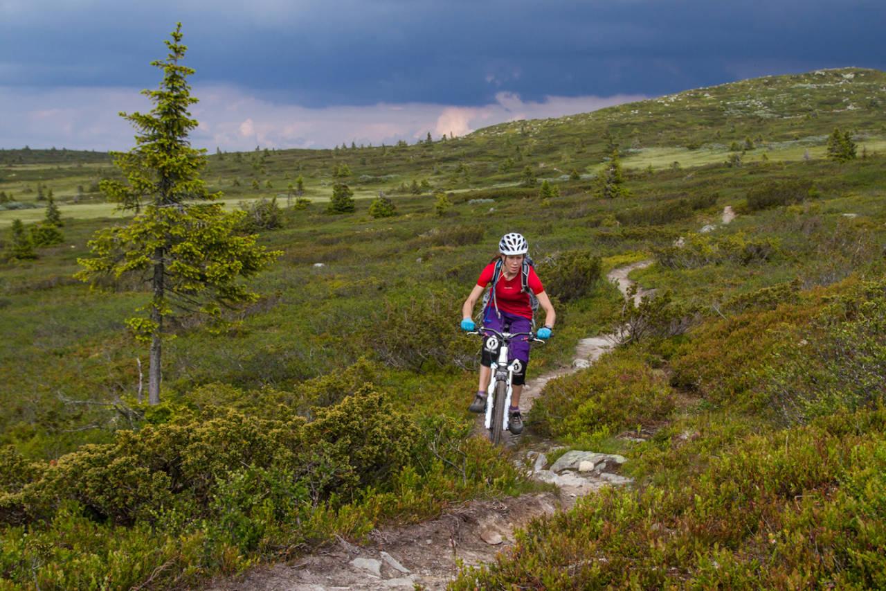 Ny norsk forskningsrapport fastslår at det er mengden bruk, ikke type aktivitet, som avgjør hvor stor slitasjen på stiene blir. Foto: Caroline Strømhylden/NOTS Lillehammer