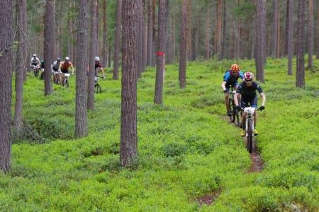 Trans-Østerdalen tredagers blir første etapperitt i Norgescup maraton. Rittet i Nord-Østerdalen byr på stor variasjon i terreng og profil i løpet av de tre etappene. Foto: Per Inge Sagmoen