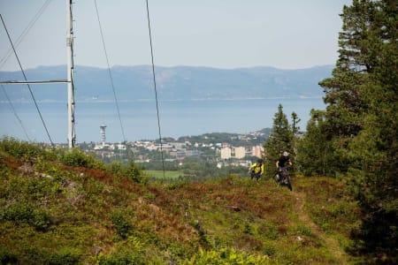 Arne Gran og Odd-Ivar Dahl klatrer opp en av de mange stiene i Estenstadmarka med utsikt mot byen. Tyholttårnet skimtes i bakgrunnen.