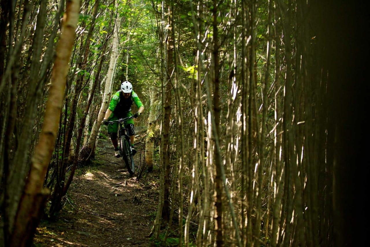 Kjartan Sunnset krangler med tett skog i Tomsetmarka. Skogen her kryr av stier, og du kan holde på lenge i samme område uten å krysse samme sti to ganger.