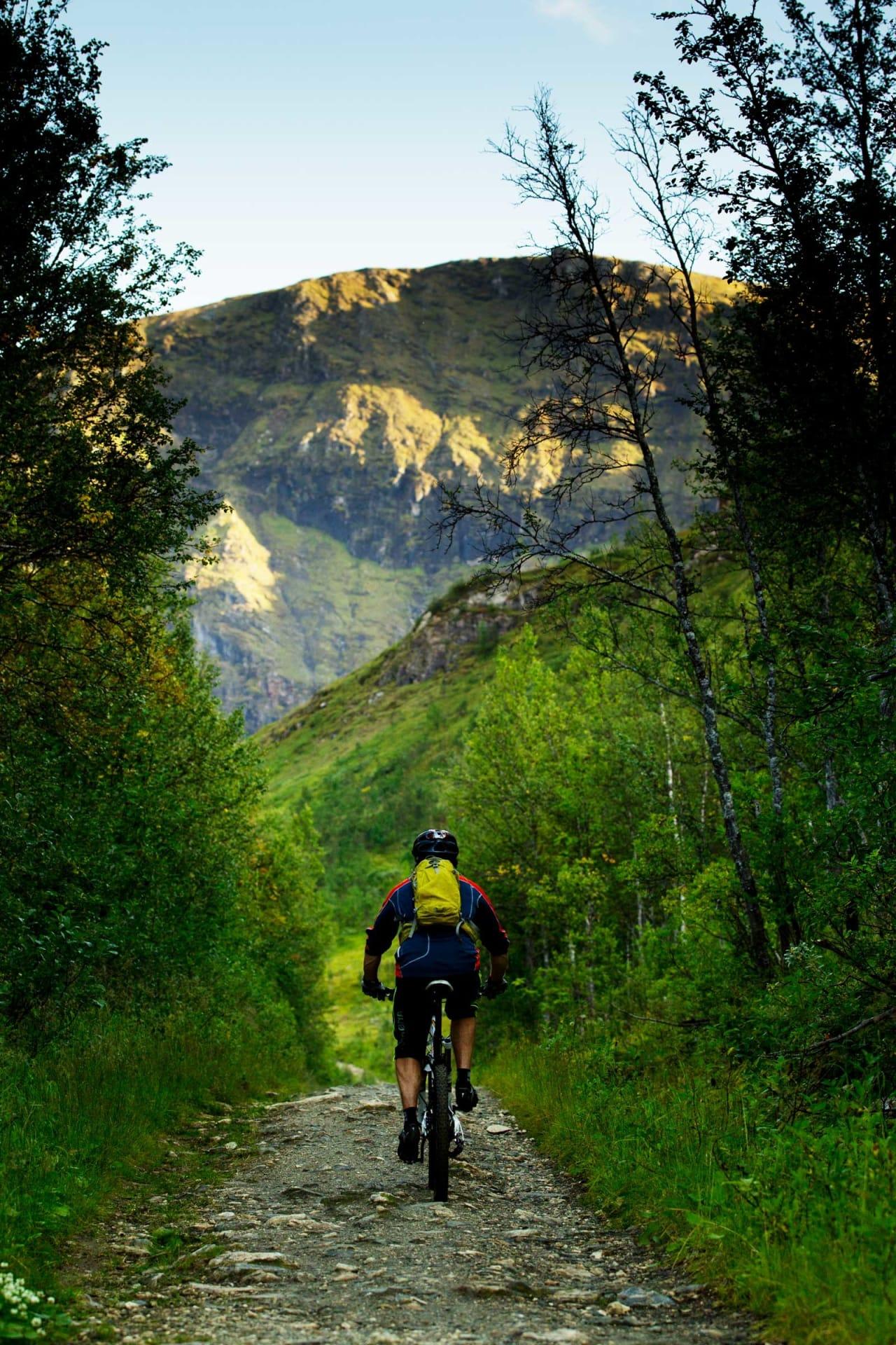Klatringen opp til Bønntua fra baksiden er lang og tidvis bratt, men belønningen du får på vei ned gjør alt strevet verdt det. / Stisykling i Norge.
