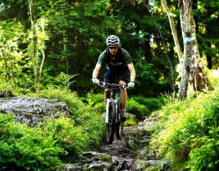 Utforkjøringen ned fra Brunkollen er teknisk så det holder. Henrik Alpers jobber med konsentrasjonen i et steinparti. / Stisykling i Norge.