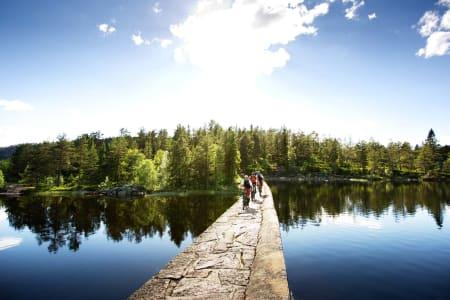 Petter Andreas Strøm, Gaute Reitan og Svenn Fjeldheim nyter en vakker soldag på stiene mellom Nerdammen og Drammen Skisenter. / Stisykling i Norge