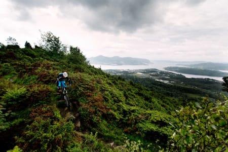 Bendik Been nyter utsikten over Knarvik et lite øyeblikk før stien forsvinner under tregrensa igjen. / Stisykling i Norge.
