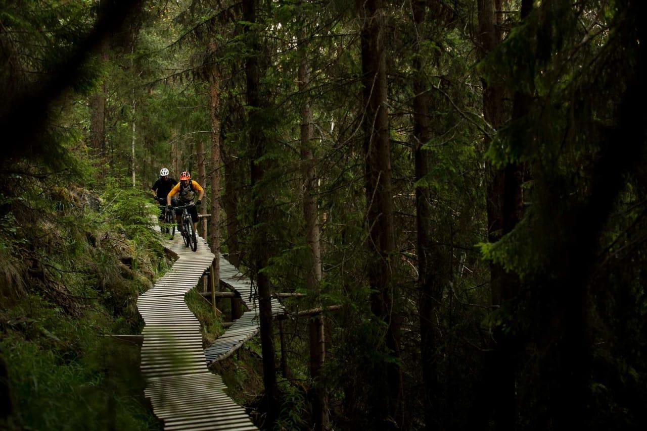 I Nesbyen får du testet høydeskrekken på håndbygde tre-elementer. Ove Grøndal og Frank Jonny Brenno løfter blikket. / Stisykling i Norge.