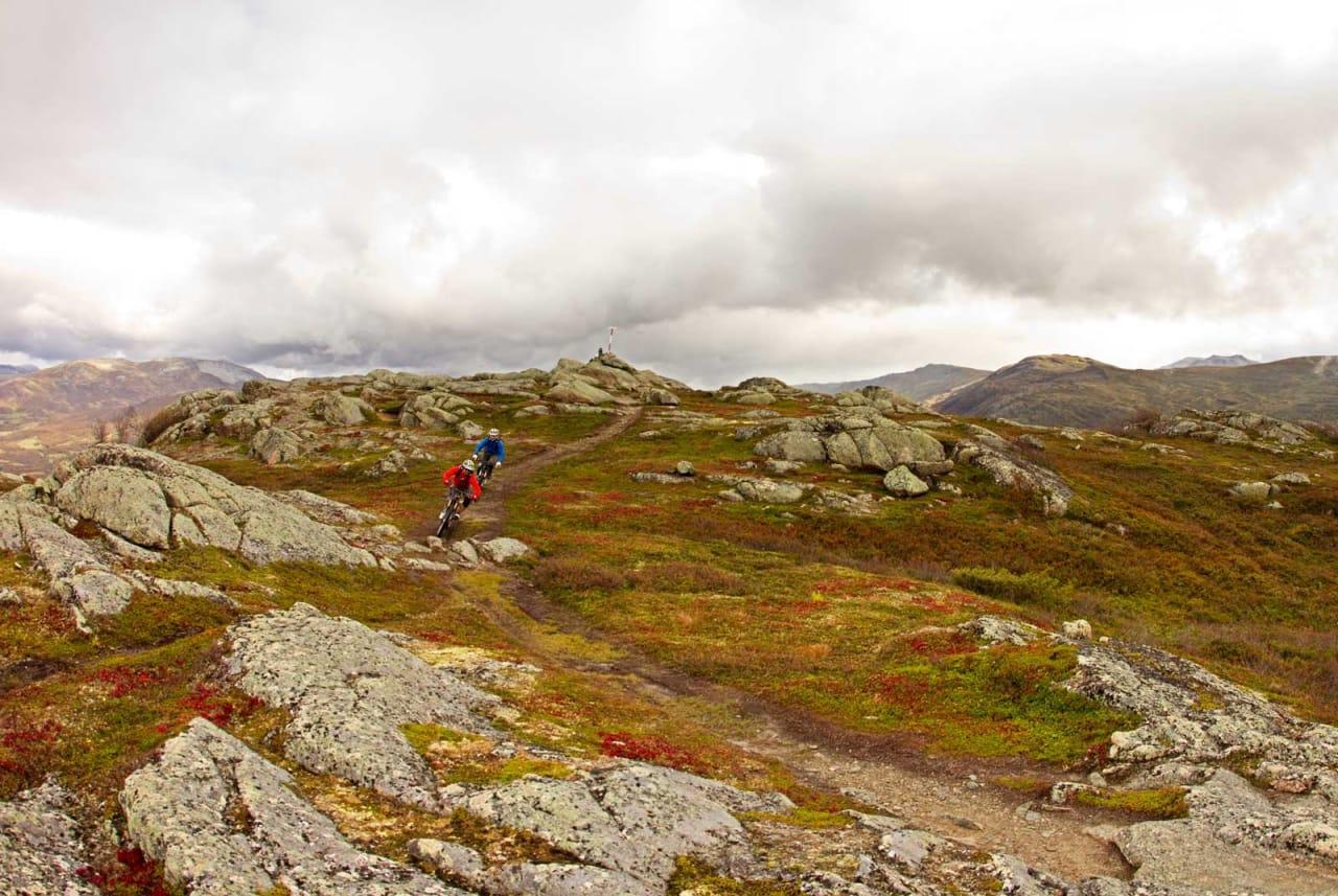Trygve Sande og Odin Sande setter de første svingene ned fra Rauhovden. / Stisykling i Norge.
