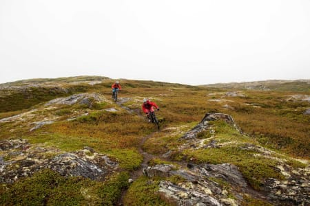 Sæterhaugen er en kort og fin topptur vest for Oppdal. Trygve Sande og Odin Sande sykler smalsti på toppartiet. / Stisykling i Norge.
