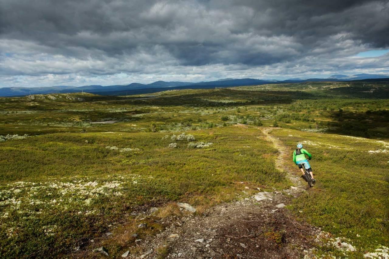 Torger Fenstad finner flyten på utforkjøringen ned mot Fagerhøy. / Stisykling i Norge.