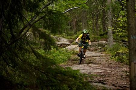 Anders Anker-Rasch på vei ned fra Haukåsen mot Lutvann i Østmarka. / Stisykling i Norge.