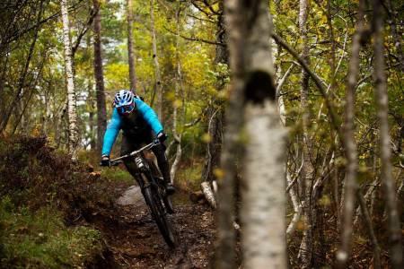 I Moldemarka har det i senere år utviklet seg et stisyklistmiljø som både bygger og utbedrer stier. Pål Nakken gir på ned Axess-stien. / Stisykling i Norge.