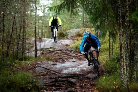 Turen til Sandbakken kan oppsummeres i mye røtter og svaberg. Morsom sykling på tørt føre, enda mer spennende når det er vått. / Stisykling i Norge.