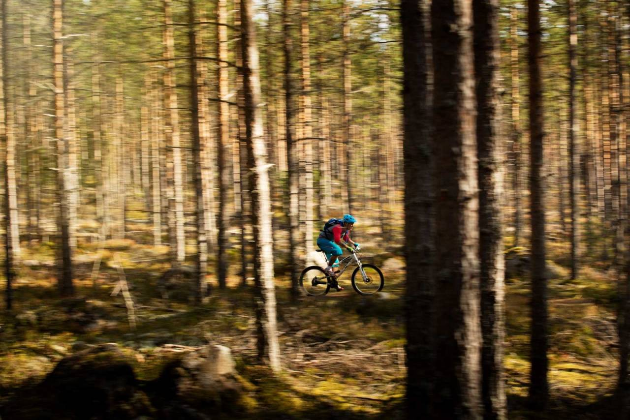Stiene rundt Elverum går for det meste på veldig flatt underlag, og du blir skånet for lange og bratte klatringer. Et perfekt område for nybegynnere. / Stisyykling i Norge.