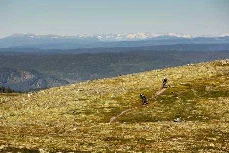 Ove Grøndal og Frank Jonny Brenno koser seg på førsteklasses høyfjellssti mot Trommenatten. / Stisykling i Norge.