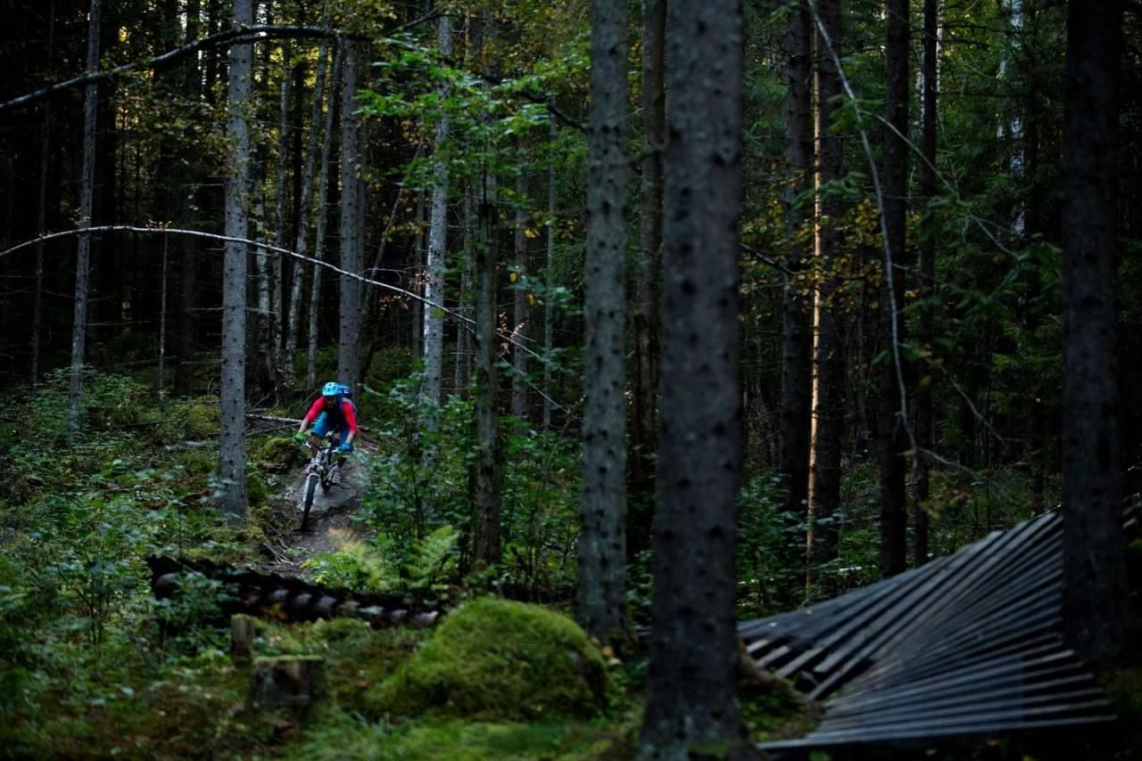 Vindheia er et fint å oppsøke om man vil leke seg på slutten av en stitur, eller bare prøve seg på å få luft under hjulene. / Stisykling i Norge