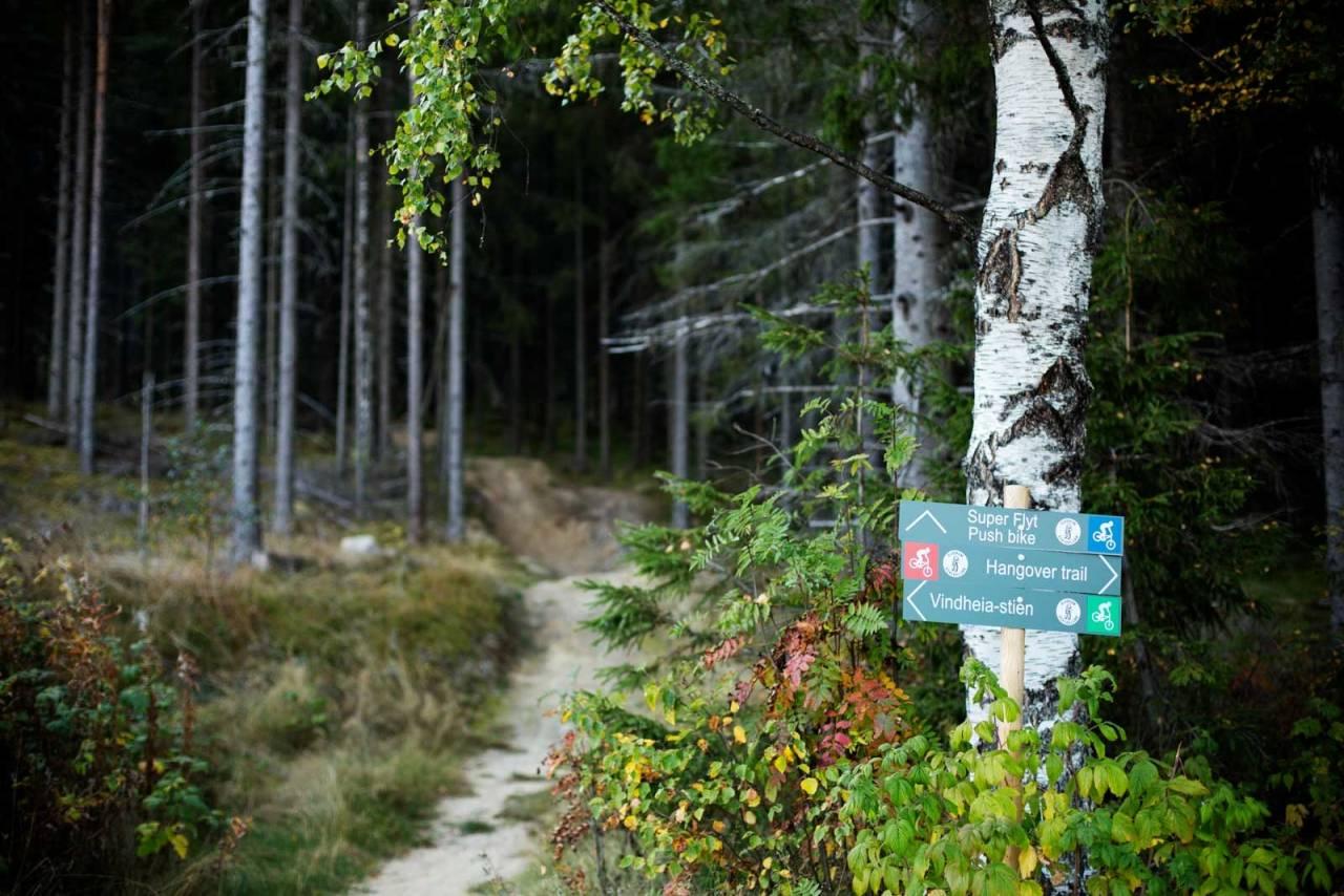 Fra Stisykling i Norge