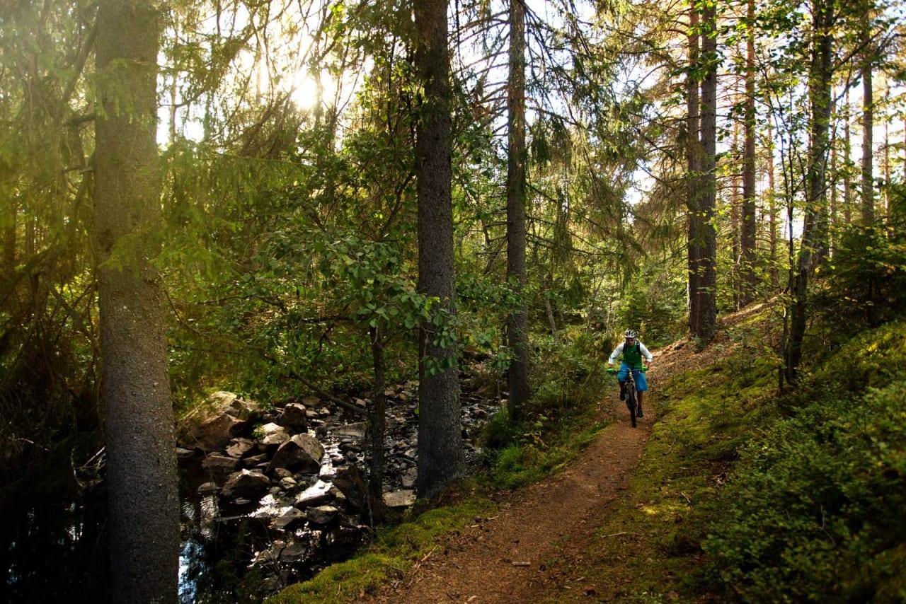 Langs elva Terningåa går fine og enkle flytstier. / Stisykling i Norge.