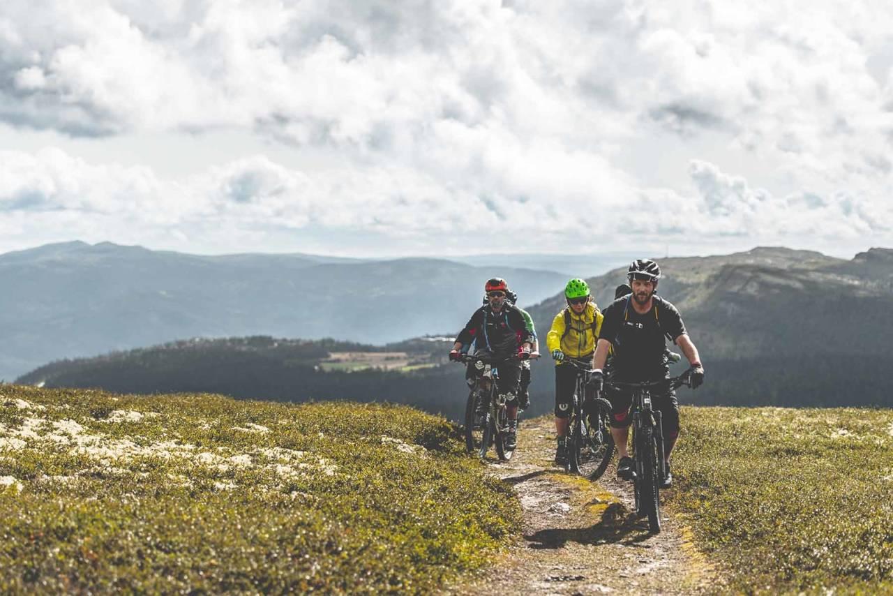 sykkelviku ringebu 2020 sykkelfestival stisykling